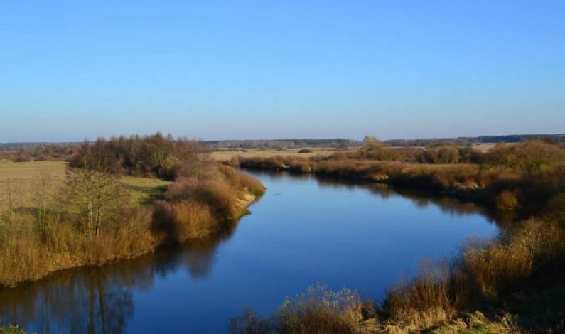 Walki VIII Batalionu AK na Nowogródczyźnie