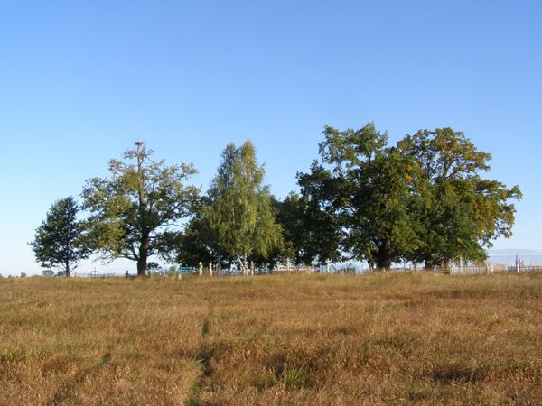 Poleski cmentarz