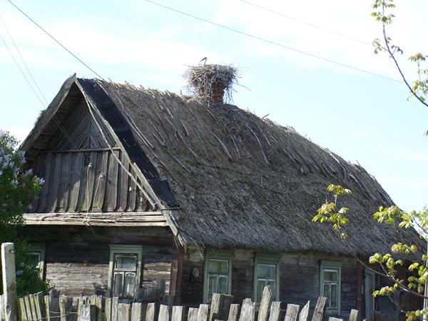 w.Kudricze. Opuszczona poleska chata