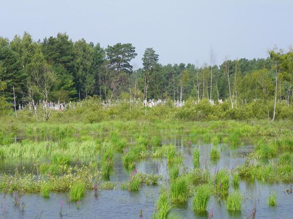 Wołymń. Cmentarz nad wodą