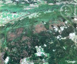 Na południu od Turowa - sytuacja w Parku Narodowym