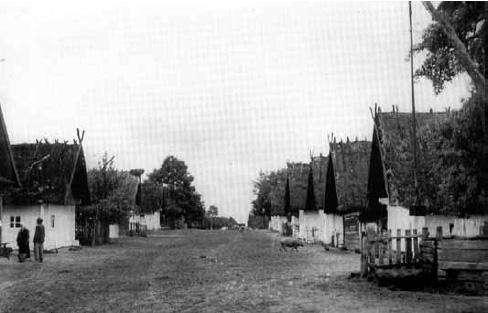 Typowa wieś poleska (fot. J. Szymańczyk, ok międzywojenny, ze zb. J. Szymańczyka)