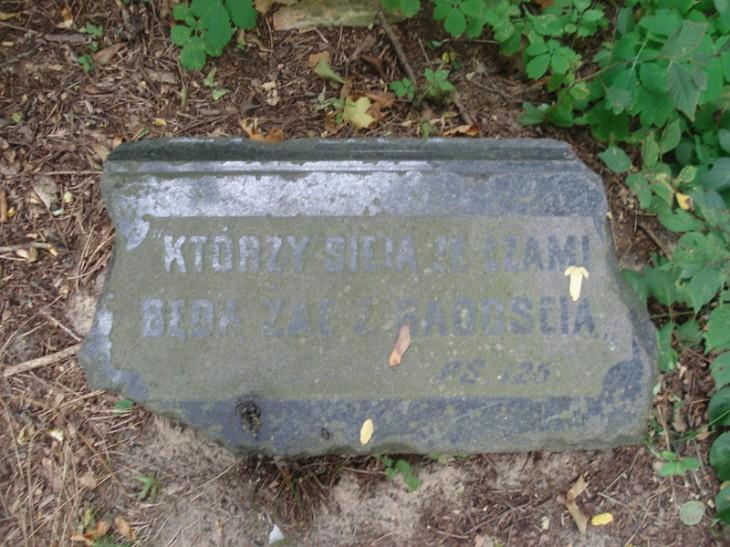 Zdewastowany cmentarz w Mołodowie