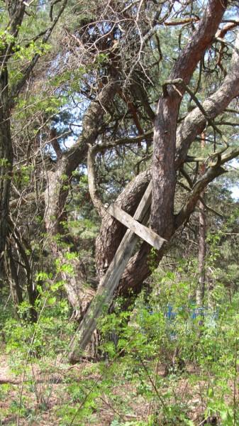 Krzyż – cmentarz obok wsi Drońki.