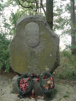 Grób 8 nieznanych polskich żołnierzy 34 PP WP z 1919 r.