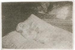 19. Śmierć H. Tumiłowicz 16.08.1940, ur. 2.11.1939 r.