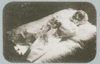 Śmierć Zbigniewa Gilejko s. Jana i Lucji (miał 6 miesięcy). Foto Jadwiga Tumiłowicz
