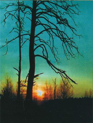 Wschód słońca nad Olmanami (fot. A. Abramćuk)