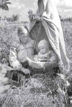 Poleszuczka z dzieckiem podczas żniw