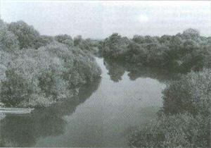 Rzeka Jasiołda