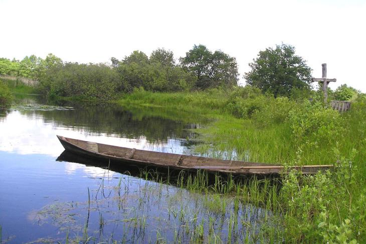 Rzeka Lwa