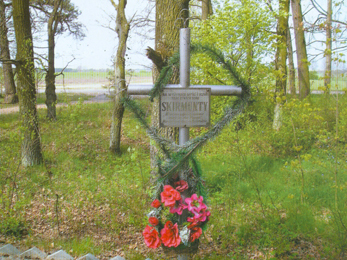 Park Porzecze, grób Romana Skirmunta