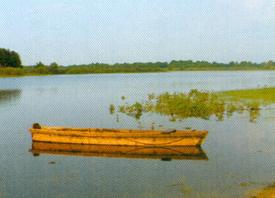 Jezioro Żabodź