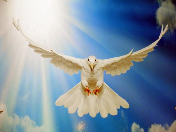 Dekoracja z okazji świeta Zesłania Ducha Świętego w kościele Prużańskim