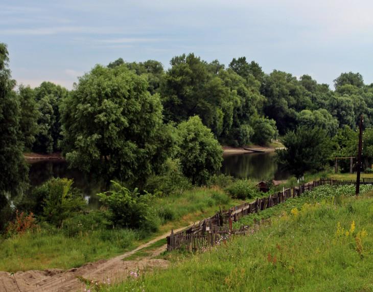Widok od strony Góry Zamkowej – wczesnośredniowiecznego grodziska z zachowanymi wałami i śladami późniejszego zamku.