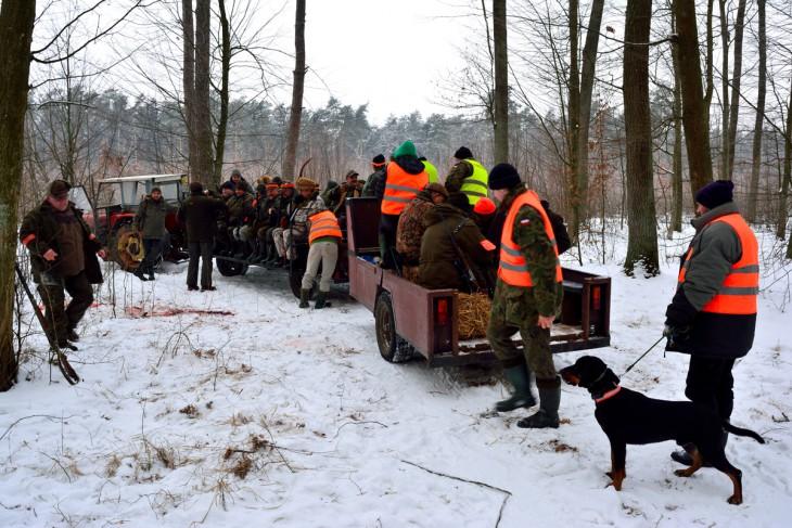 """""""Pociąg myśliwski"""": ciągnik oraz dwie specjalne przyczepy - doskonale sprawdza się w trudnych warunkach terenowycg"""