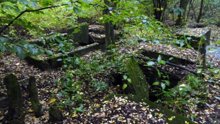 Zdewastowane grobowce dziedziców majątku w Litwinowie na cmentarzu (już nie istnieje) w ok. w. Łyszczyki (rej. Kobryński)