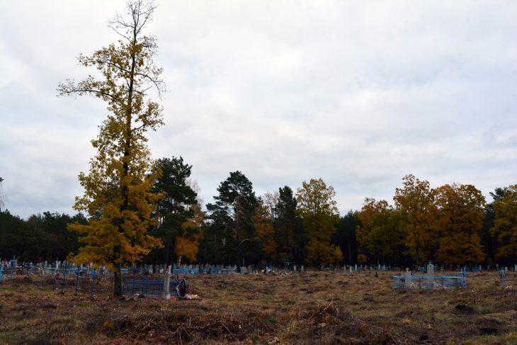 Cmentarz w Bostyniu (rej. Łuniniecki)