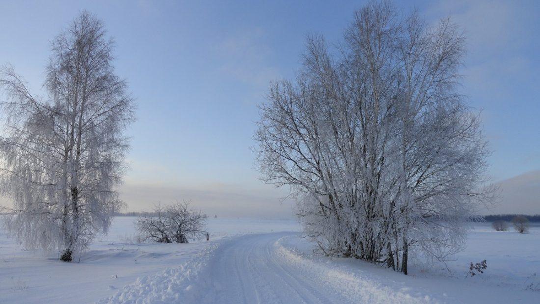 Zima w Kwasowszczynie